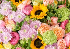 Sunflowers mixed with pink, orange, purple and green accent flowers