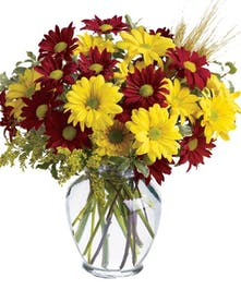 This lovely arrangement is perfect for any occasion!