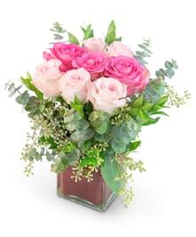 Rosé Romance