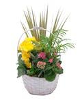 Bloomin' Sunshine Days Basket