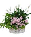 Living Blooming  White Garden Basket