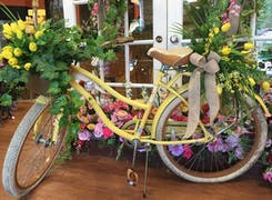 A bicycle decorated with fresh yellow flowers; an accent at our Mobile, Alabama location